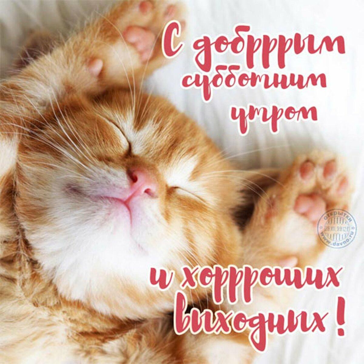 Пожелание доброго утра и хороших выходных